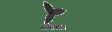 Notified black logo