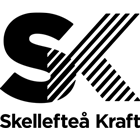 Skekraft black logo